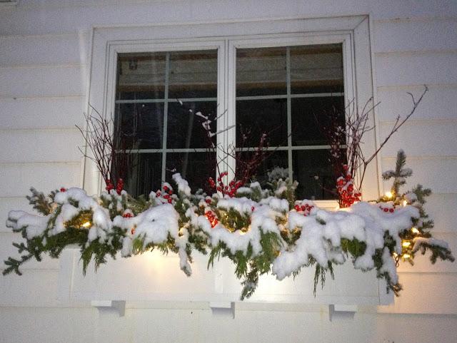 holiday window box -- The Impatient Gardener
