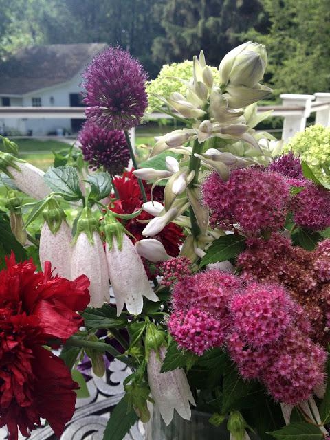 The Impatient Gardener -- The Garden Appreciation Society Week 10