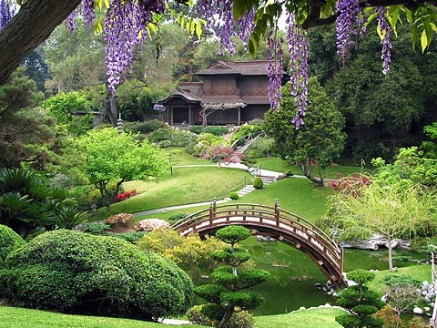 Superieur Seeing A Good Japanese Garden Such As One Might Find At A Botanical Garden  (or, I Suppose, In Japan) Can Be Mind Blowing. They Are Structured, But  Colorful ...