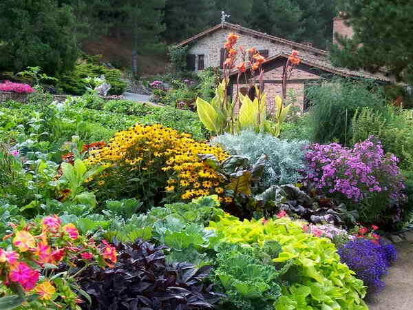 FEATURE FRIDAY: MIXED BORDERS   The Impatient Gardener Fancy Color Border