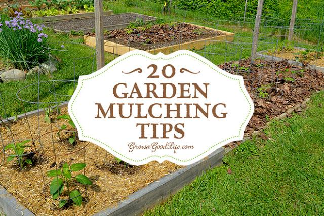 http://growagoodlife.com/garden-mulching-tips/