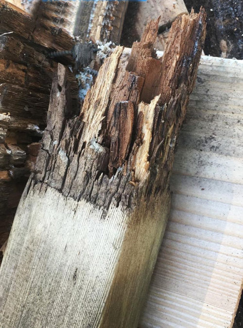Rotted cedar posts
