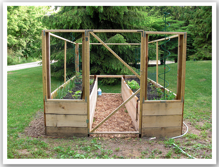 Raised bed vegetable garden with deer protection