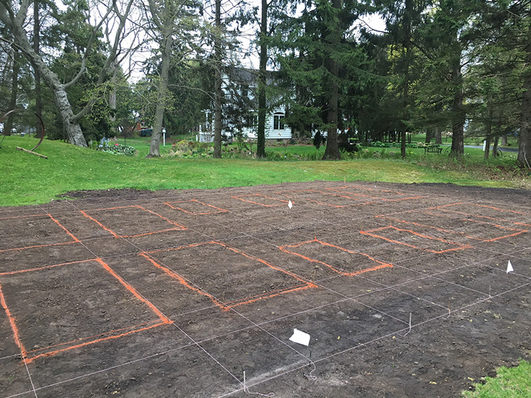 Laying out the vegetable garden