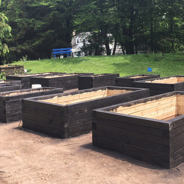 stained garden beds