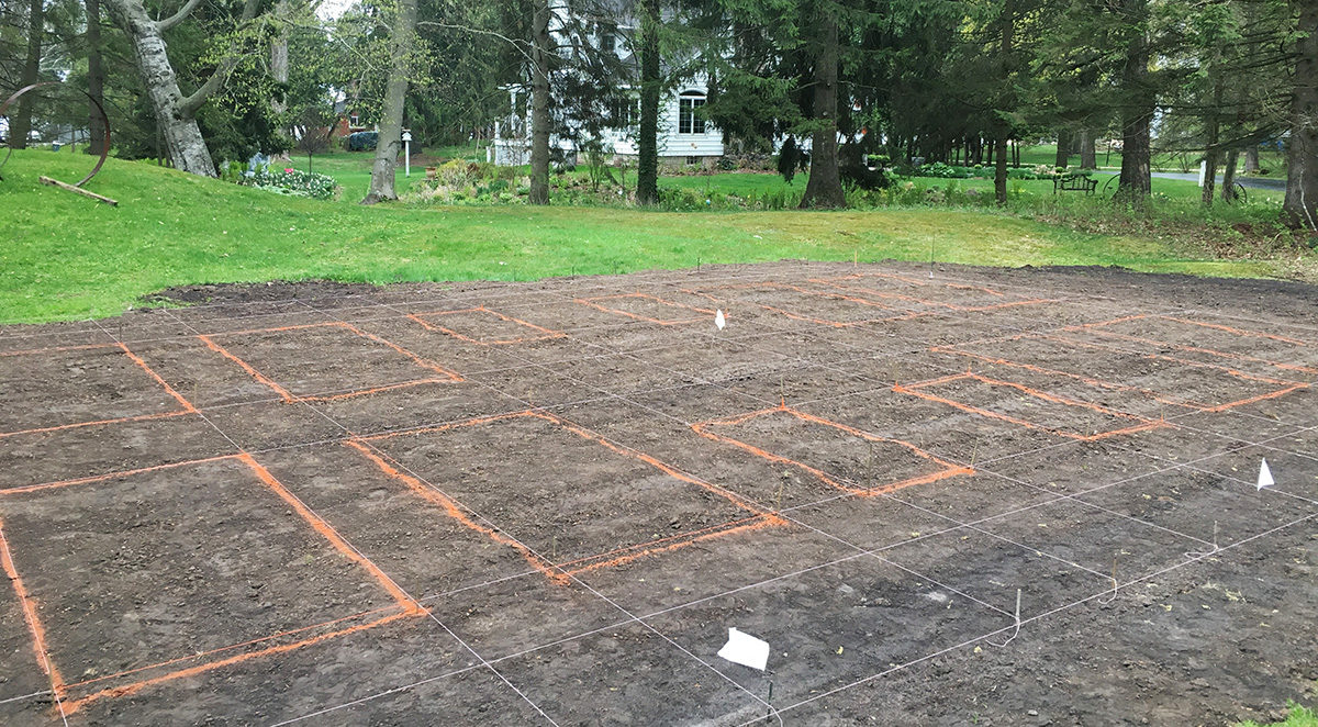 laying out a vegetable garden