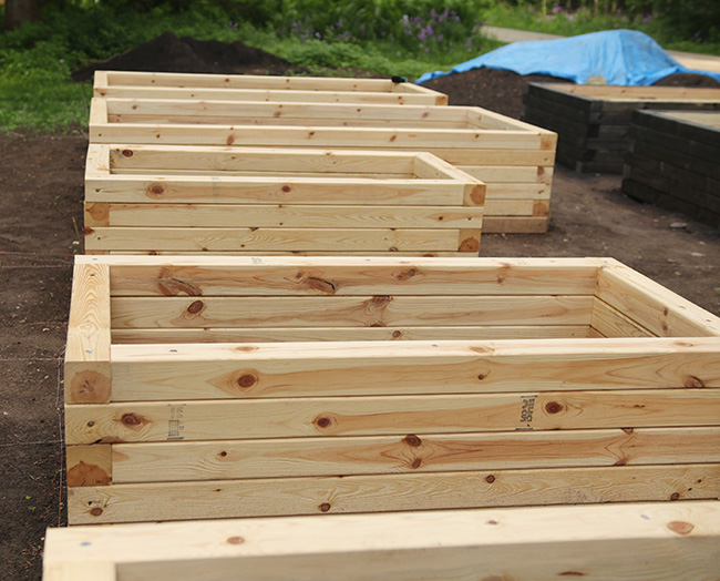 raised beds in a line.