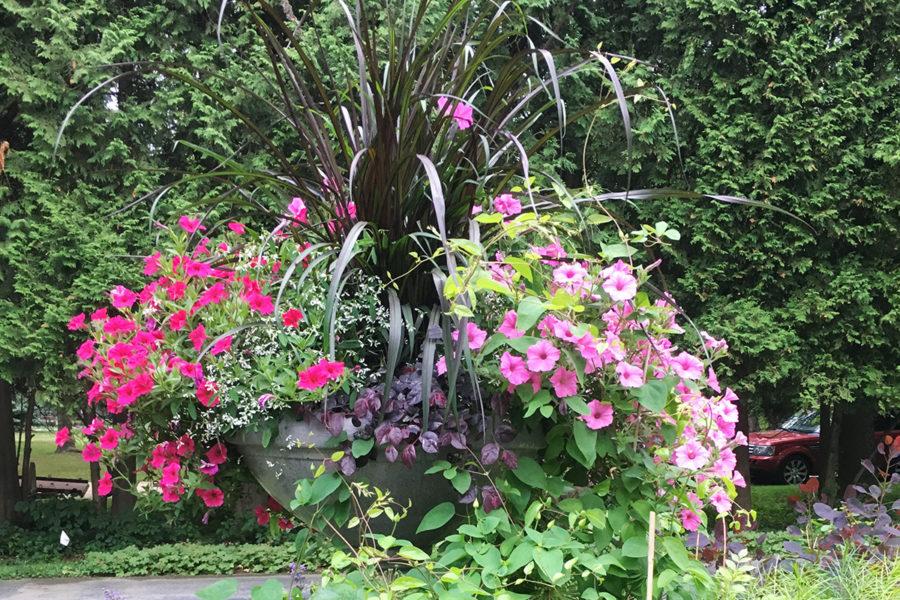 pink flower urn
