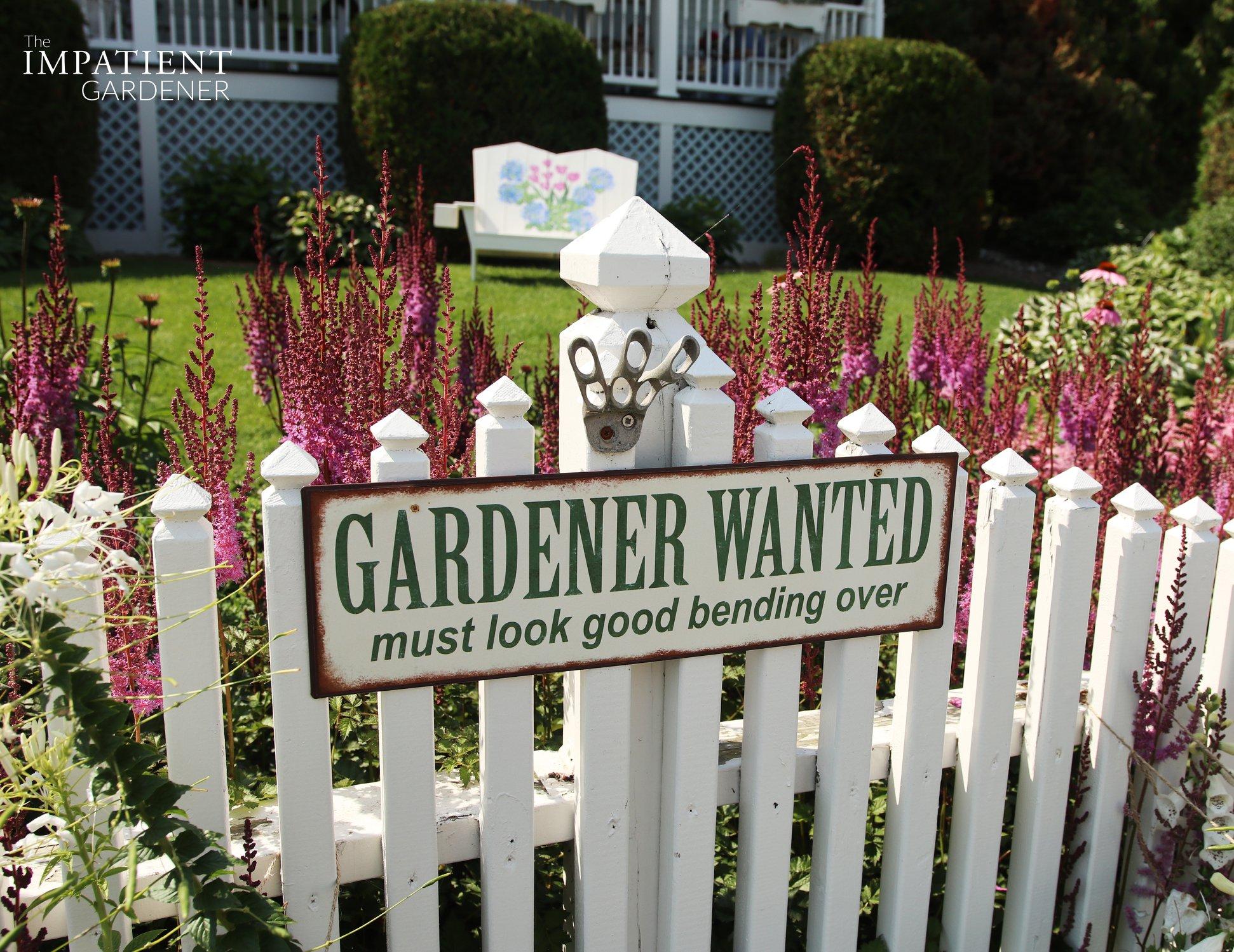 Gardener wanted. Must look good bending over.
