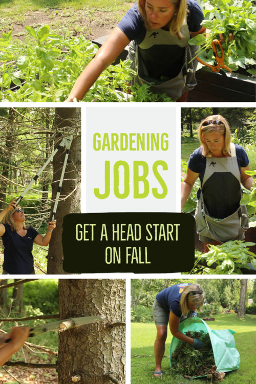 Get a jump on fall gardening jobs by gearing up now