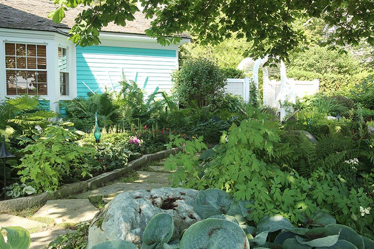 shady garden walkway