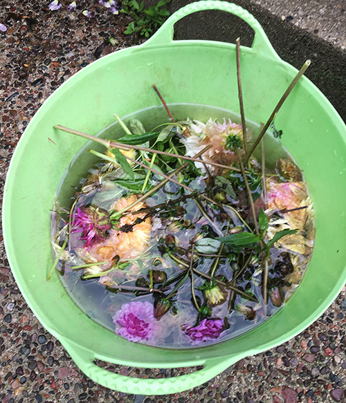 rain in bucket