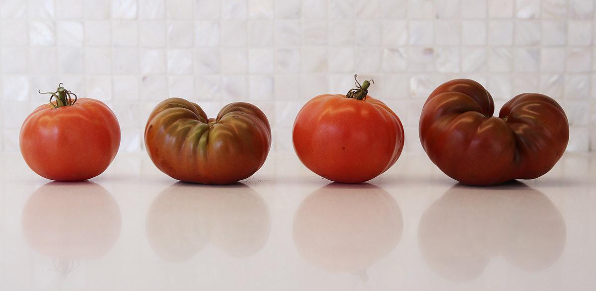 Ripen tomatoes on the windowsill.