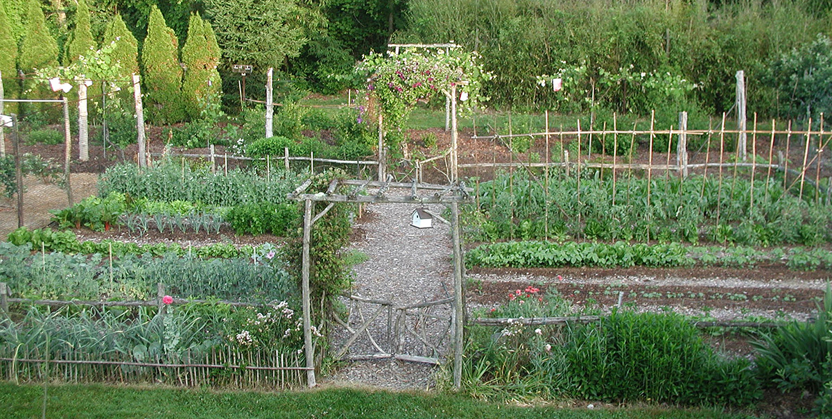 lee reich vegetable garden