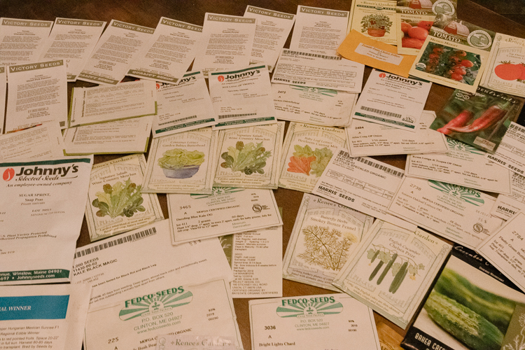 Vegetable and herb seeds