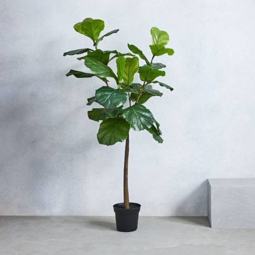 fake fiddle-leaf fig