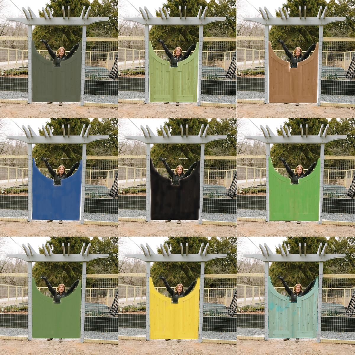 gate color options
