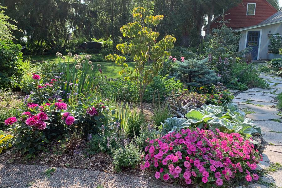 resdesigned garden