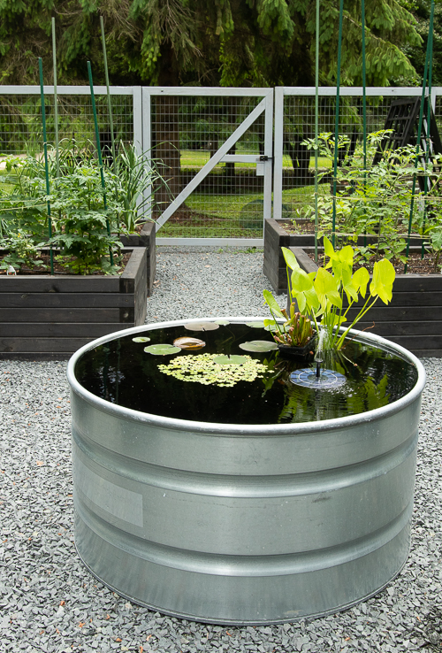 container pond