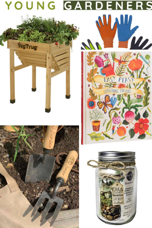 Gifts for young gardeners