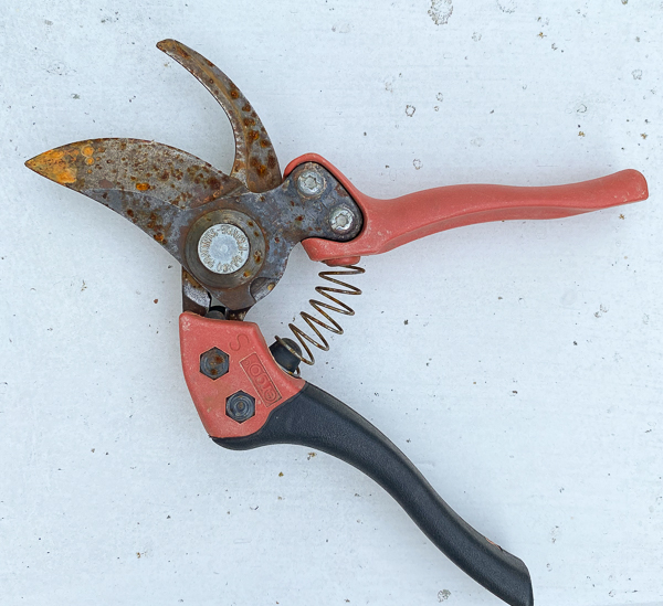Rusty hand pruner in need of repair