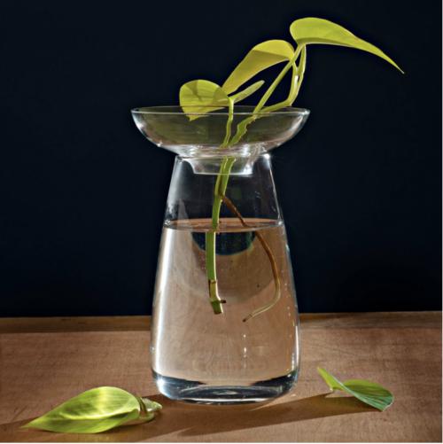 aquaculture vase